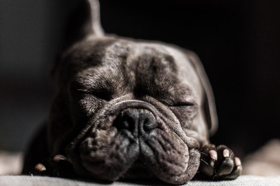 寝る前 ストレッチ 睡眠の質アップ